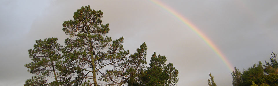 HHCC_0000_Rainbow